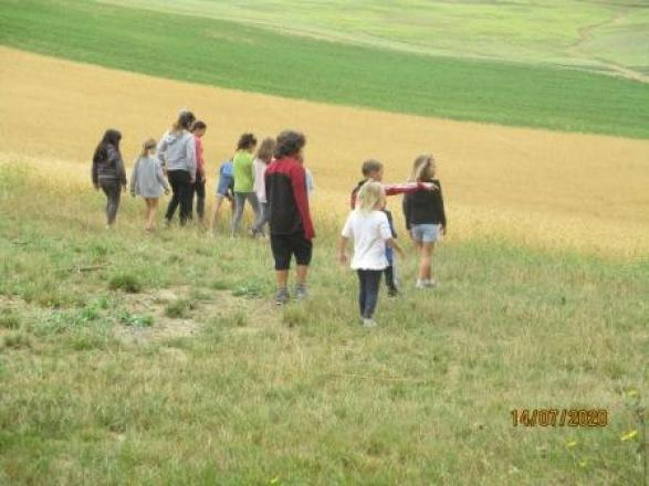 Les enfants dans les vallons de céréales